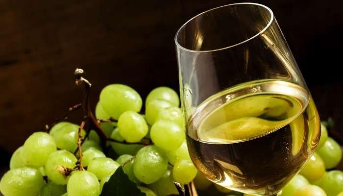 tipos de uvas brancas - texto 3
