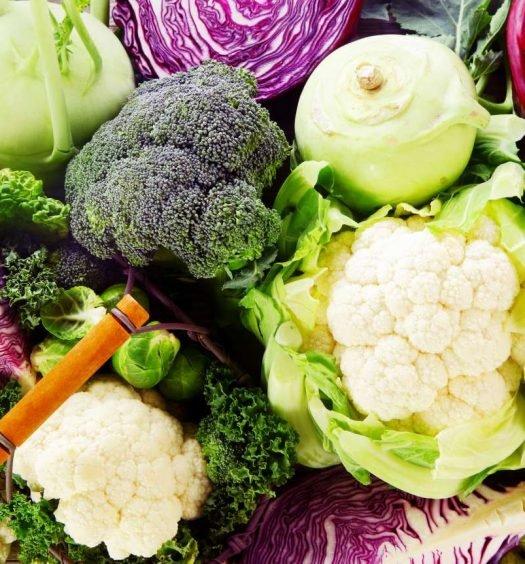 vegetais brássicos - capa