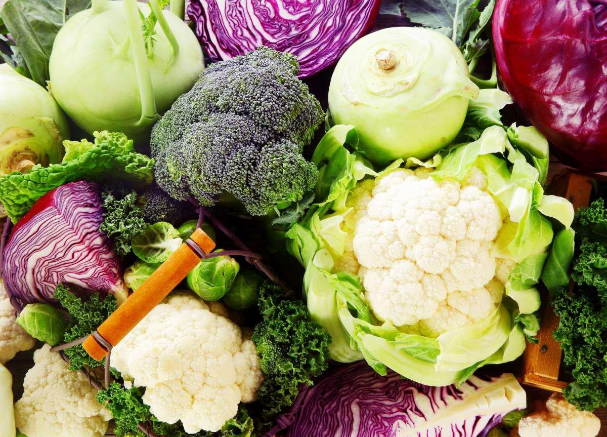 O que são hortaliças brássicas? - Blog do Pão