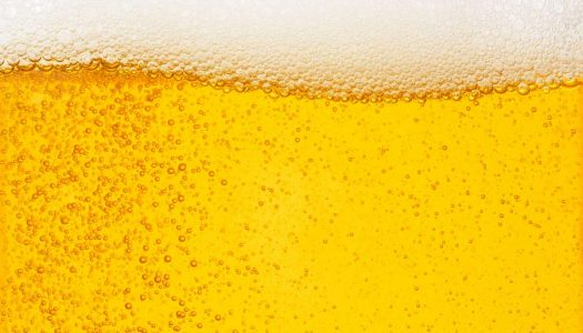 Guia da Cerveja: Tudo que você precisa saber sobre essa bebida!