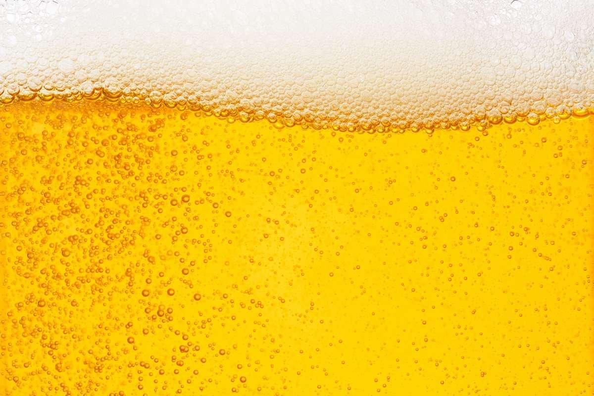 guia da cerveja - capa
