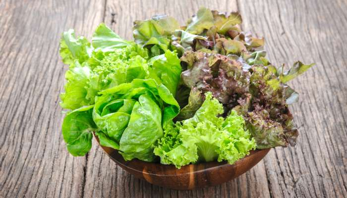 salada verde - alface