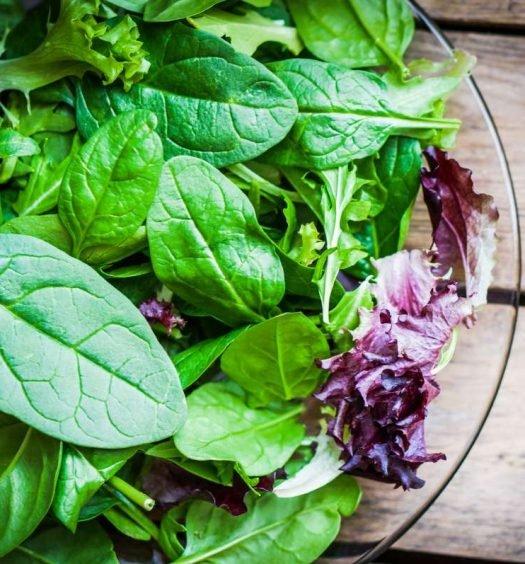 salada verde - capa