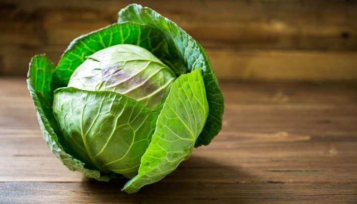 salada verde - repolho