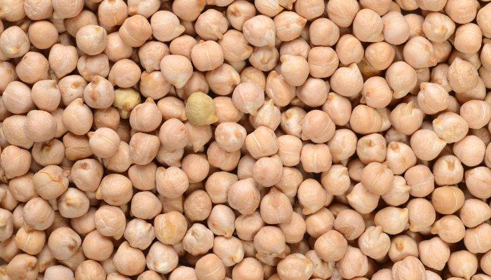 grão de bico - proteína vegetal