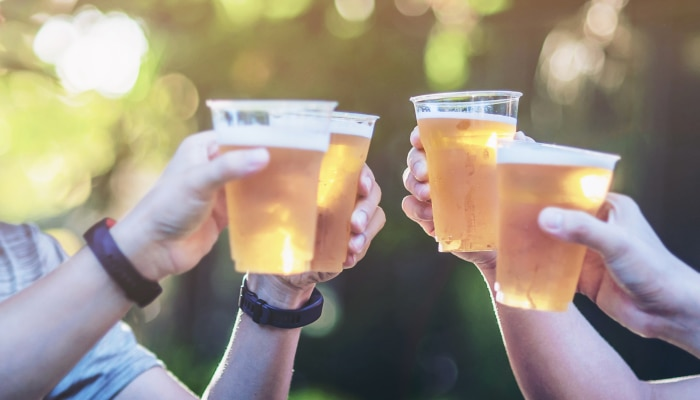 melhor cerveja - pic nic