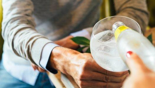 O amargor que faz sucesso: aprenda 8 receitas de drinks com água tônica