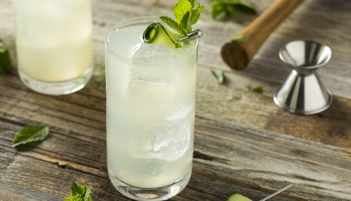 drinks com água tônica - rum e tônica