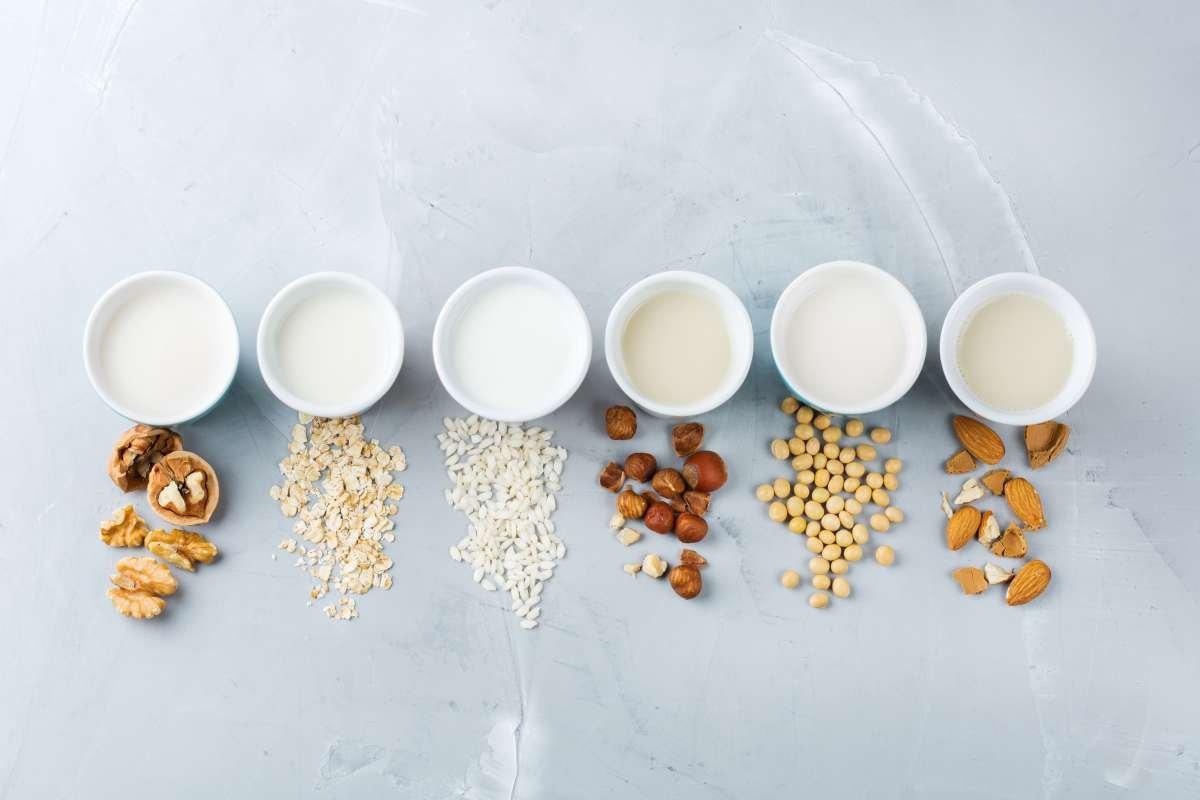 leites vegetais - capa