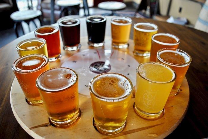 tipos de cerveja intro