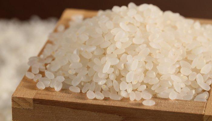 tipos de arroz - japonês