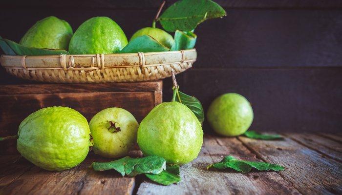 frutas do inverno - goiaba
