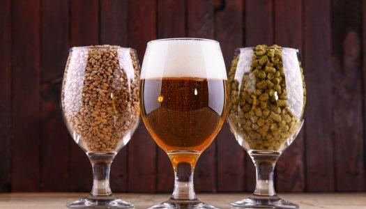Como é feita a cerveja sem glúten?