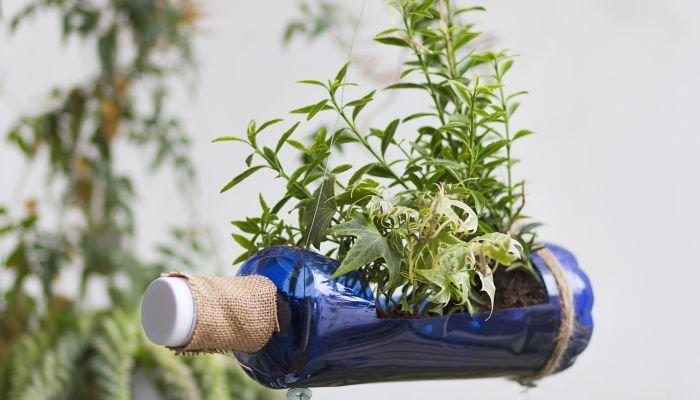 fazer um jardim vertical com temperos pendurado