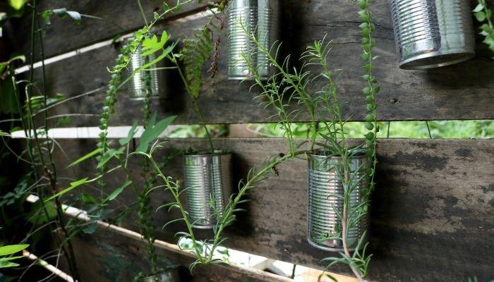 fazer um jardim vertical com temperos lata