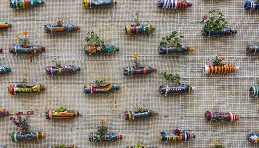 Como fazer um jardim vertical com temperos?