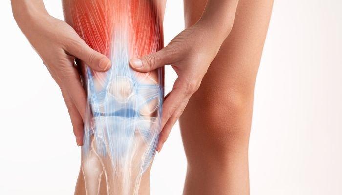 vitamina d - músculo joelho