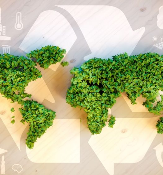 5 rs da sustentabilidade capa
