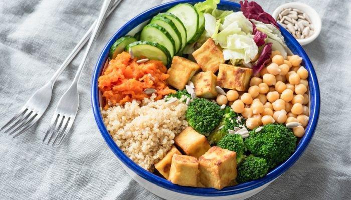 diferença entre vegano e vegetariano vegetariano estrito