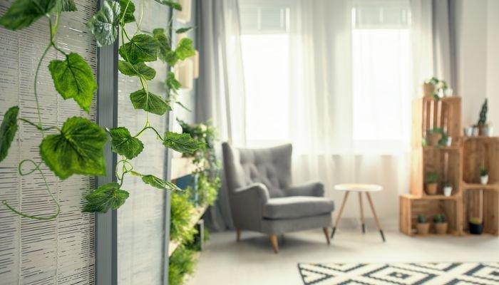 decoração sustentável dica