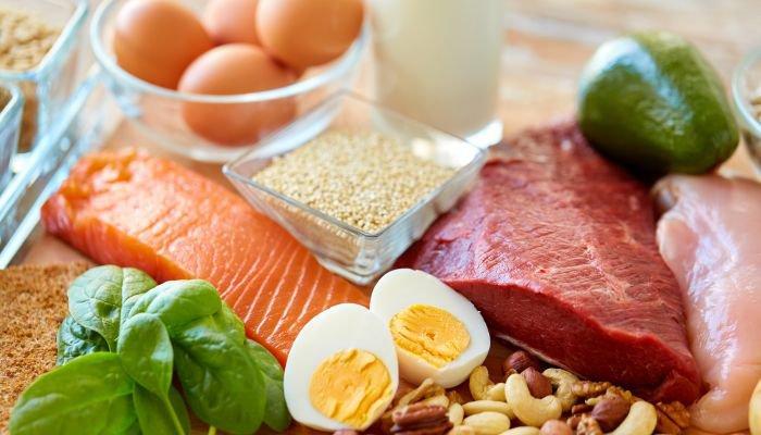 alimentos ricos em fibra e proteína proteína