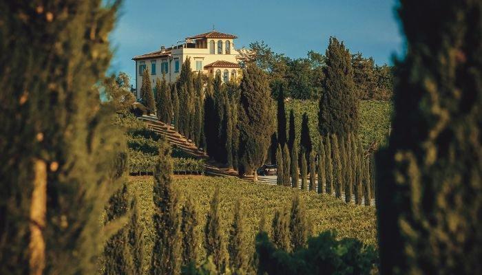 castellani winery propriedade