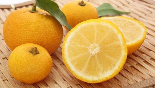 O que é yuzu? Conheça essa fruta cítrica