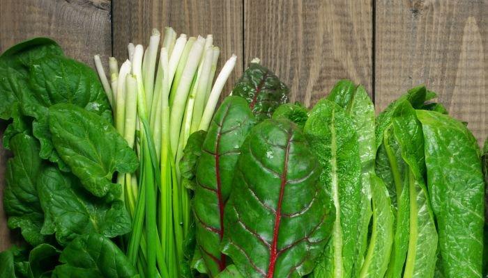 frutas e verduras de janeiro verduras