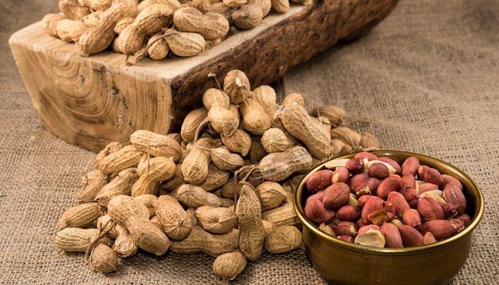 alimentos ricos em zinco amendoim