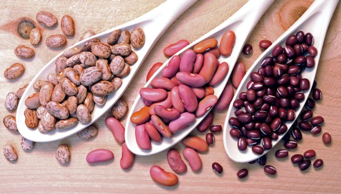 alimentos ricos em zinco feijão