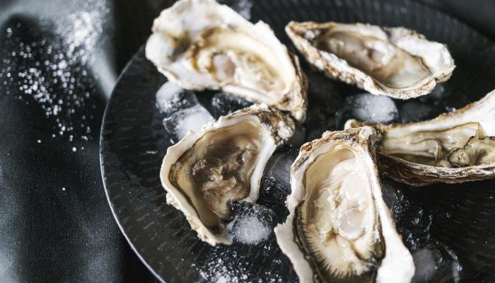 alimentos ricos em zinco ostra