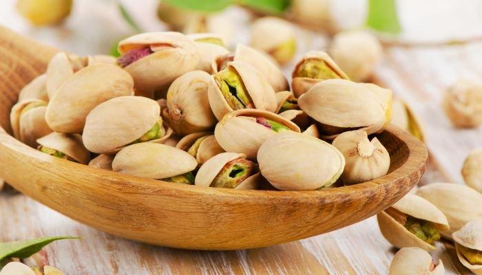o que são oleaginosas pistache