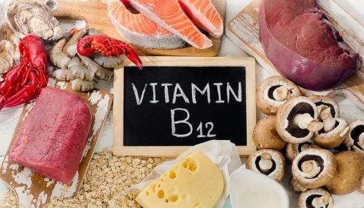 Vitamina B12: conheça esse nutriente essencial à saúde