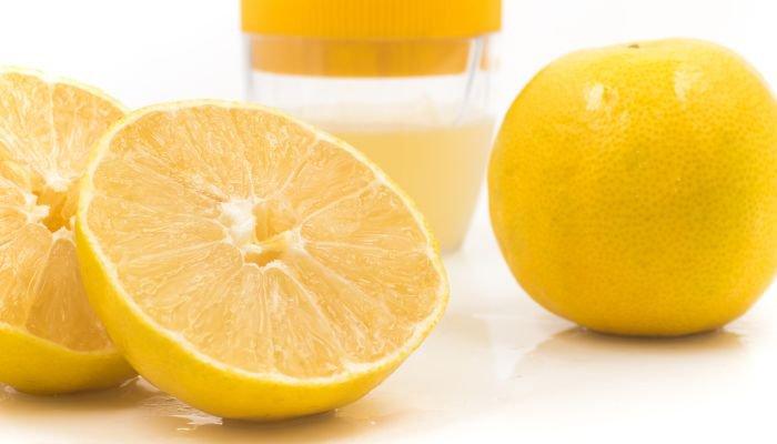 frutas cítricas lima-da-pérsia