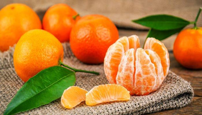frutas cítricas mexerica
