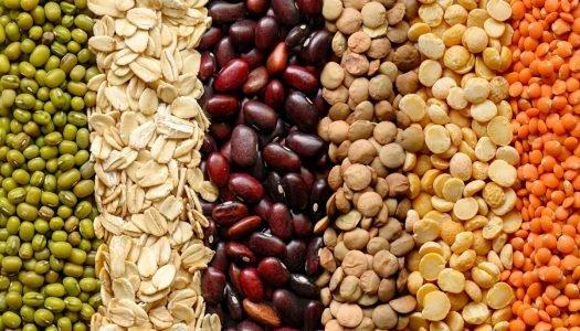 O que são leguminosas? Saiba tudo sobre esse alimento saudável