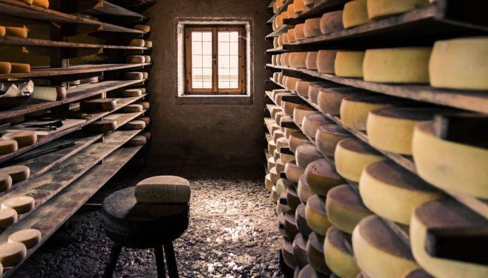 queijos artesanais fabricação