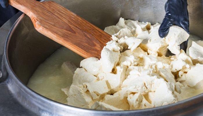 queijos artesanais manual