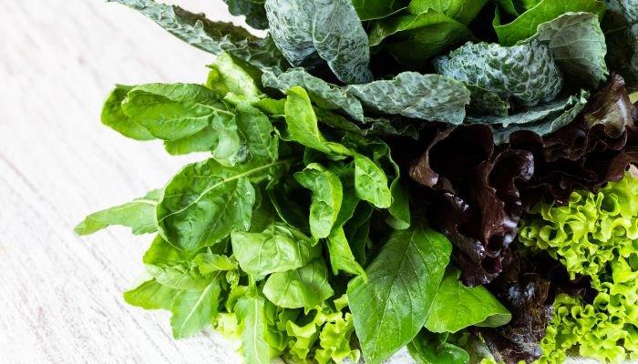 alimentos ricos em cálcio folhas verdes