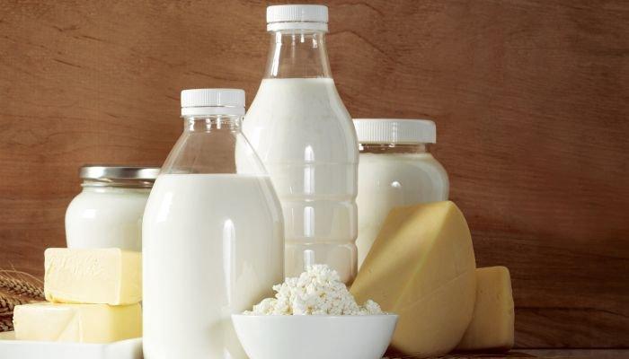alimentos ricos em cálcio leite e derivados