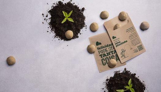 Conheça a Bola Verde do Pão: uma bola de sementes que tem tudo para brotar