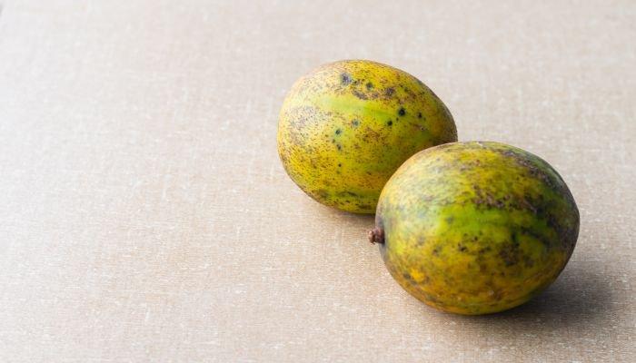 cajá-manga fruto