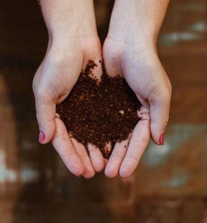 compostagem capa