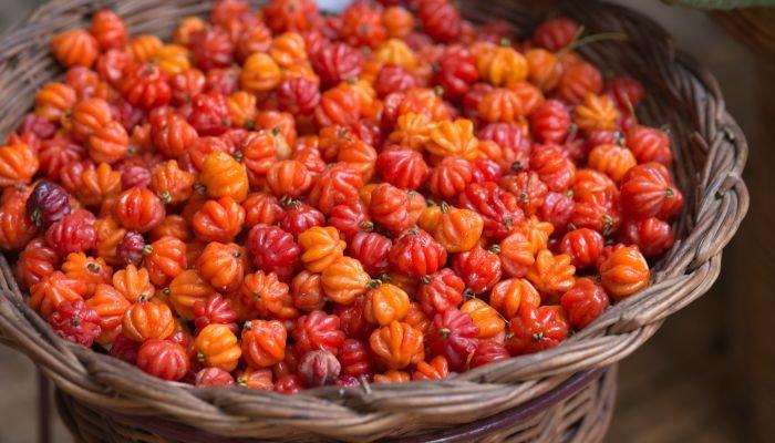 frutas low carb pitanga