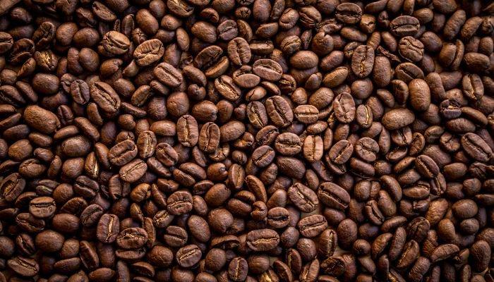 microlotes de café grãos
