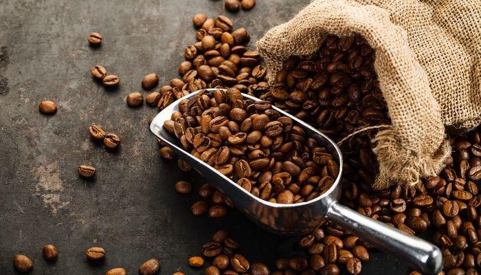 microlotes de café saca