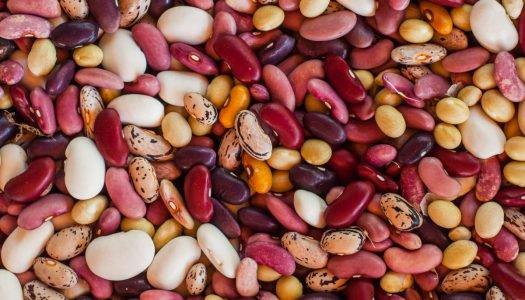 8 tipos de feijão para você conhecer