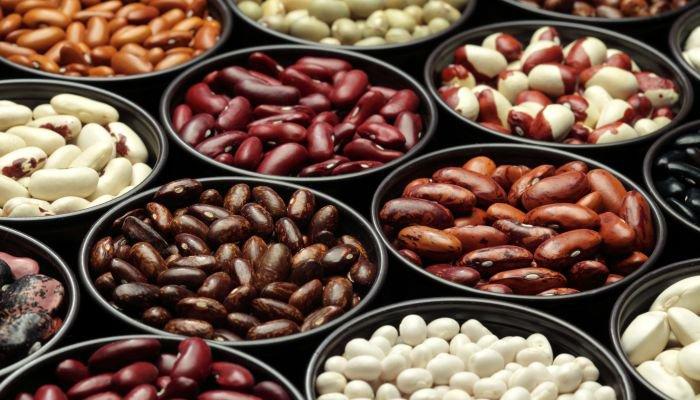tipos de feijão variados