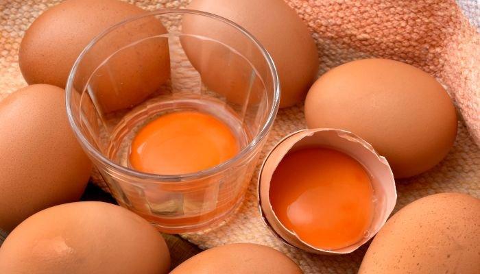 alimentos ricos em ferro gema de ovo