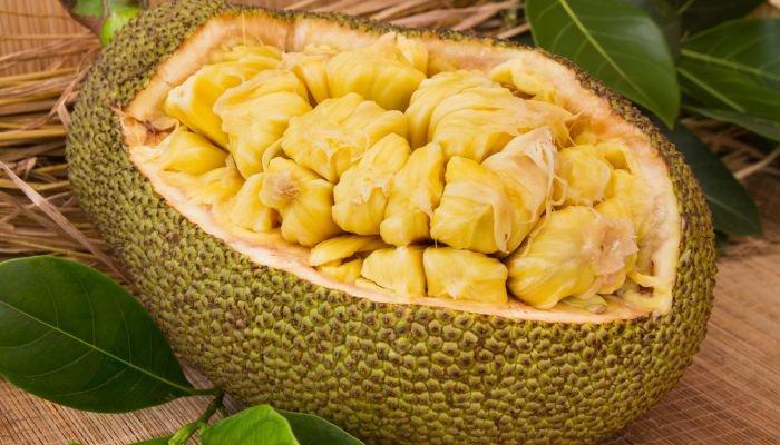 frutas amarelas jaca